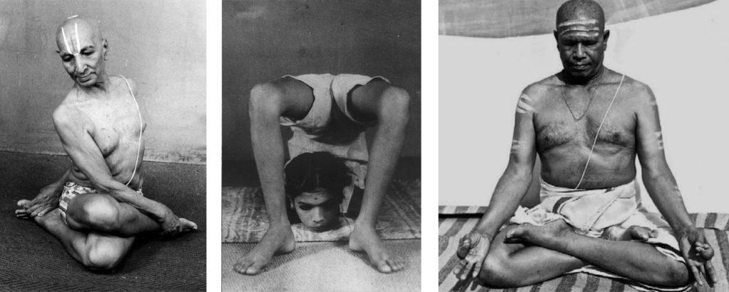 Krishnamacharya-Saraswathi Jois-Pattabhi Jois
